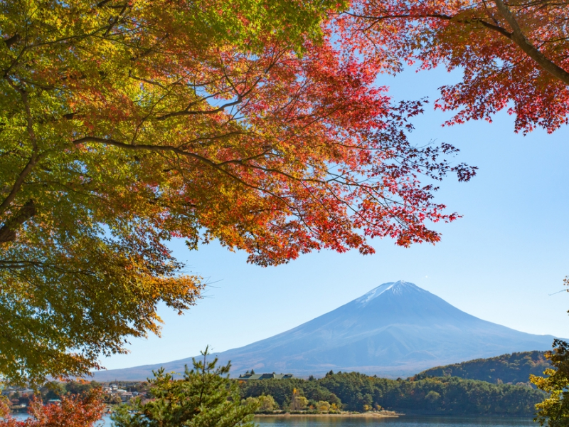 紅葉シーズン、ノープランな貴女へ 1泊2日富士山で癒されませんか?【11/4開催】
