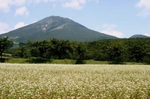 福島の未来へ「食」への取り組み