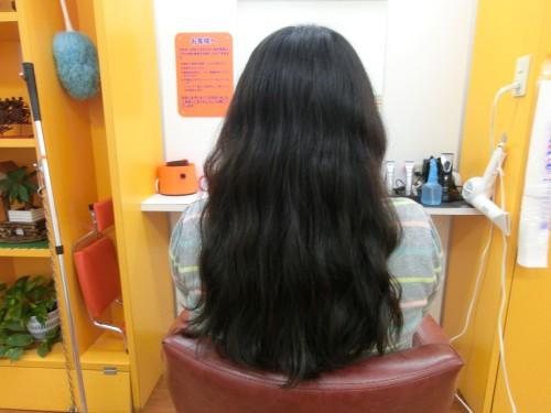 自分の髪の毛を売ってみた2