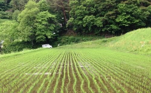 田舎で暮らしたい女性のための農業事情2