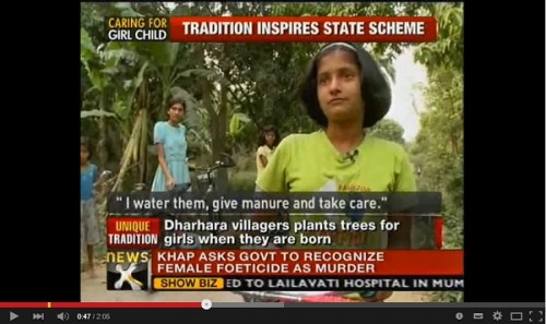 インドの「女の子を守る木」とは
