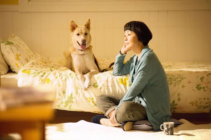 犬猫が年間12万頭も殺処分される日本 いま保護施設をドキュメンタリーで描く意味