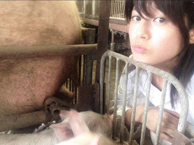 「発情するブタを育てたら、ファンを許せるようになった」 アイドルが養豚場に転職して得たこと