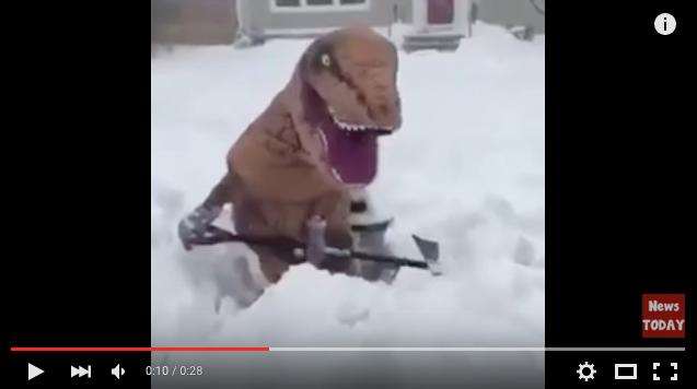 """「日本人の真面目さは体に悪い」人生がグッとラクになる思考法を、アメリカの""""雪かき恐竜""""に学ぶ"""