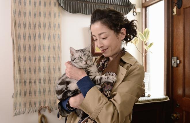 """究極の猫ドラマ『グーグーだって猫である2』 10匹以上の猫が出演した""""猫祭り""""の撮影裏話は?"""