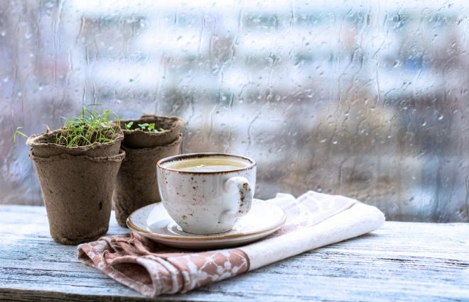 【ウートピ短歌・結果発表】降る雨が記憶を流すこともなくむしろ記憶を封じこめていく