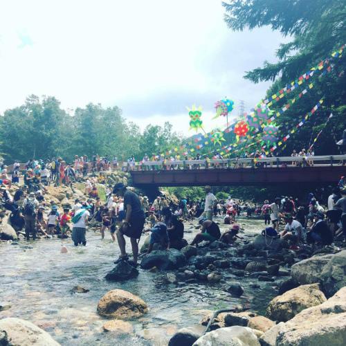 先週末開催されたFUJI ROCK FESTIVALは、自然を味わえるのも魅力
