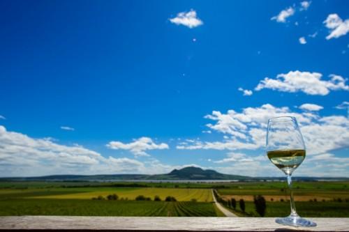 モラヴィア南部の丘陵地はチェコワインの主要産地。
