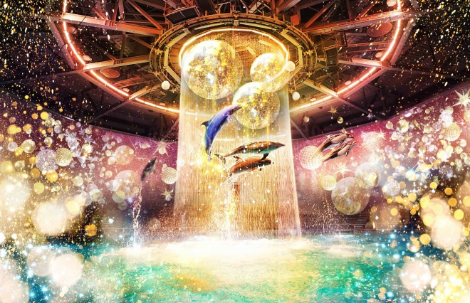 水族館で出会う、星とイルカたちの幻想的な世界「STAR AQUARIUM by NAKED」