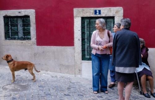 カラフルな色彩が溢れる街、ポルトガル・リスボンをひとり歩き