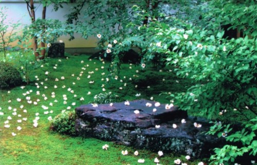 京都に泊まるならホテルより宿坊 美しい禅寺でオトナな京旅を満喫して♡