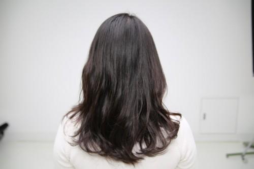 洗髪前の髪。