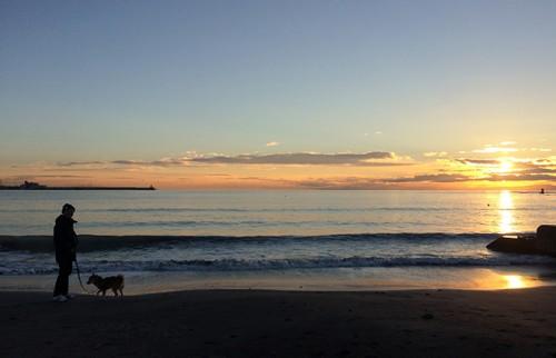 愛犬と散歩/本人提供