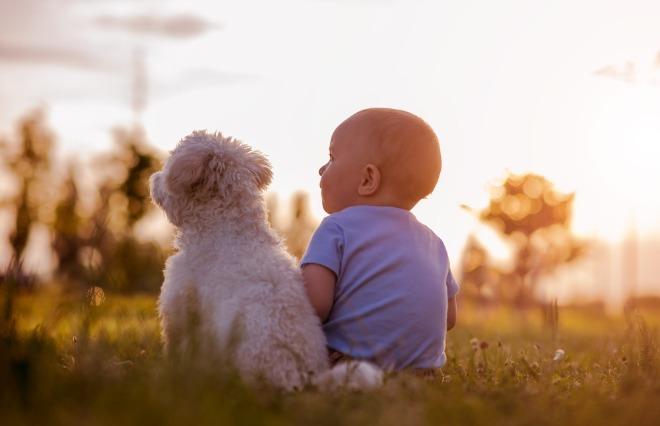 「私も犬飼いたいなあ」程度の興味で子供を持った【小島慶子のパイな人生】