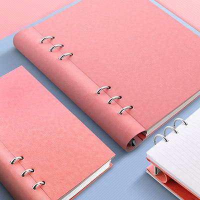 Filofax Clipbook Pastel Rose
