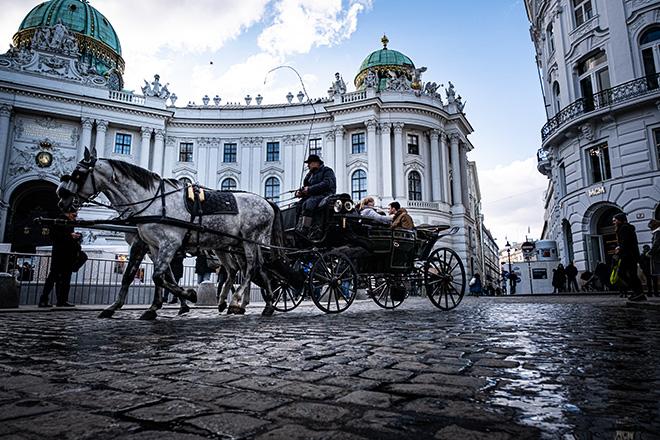 馬車も通る街並みをゆっくり眺め、ウィーン時間を満喫