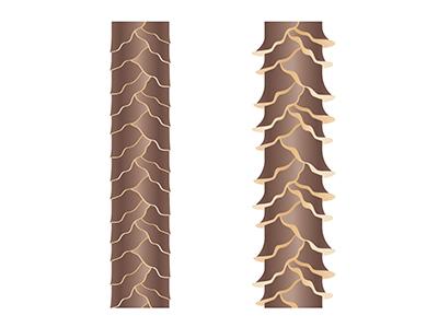 左はツヤがある髪の表面。右がキューティクルがはがれた髪。