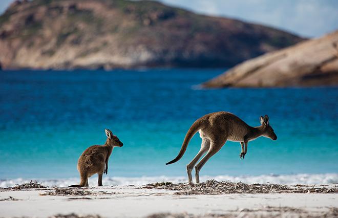 ちょっとだけ旅気分。西オーストラリア州の絶景10選